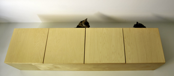 Cabinet cats